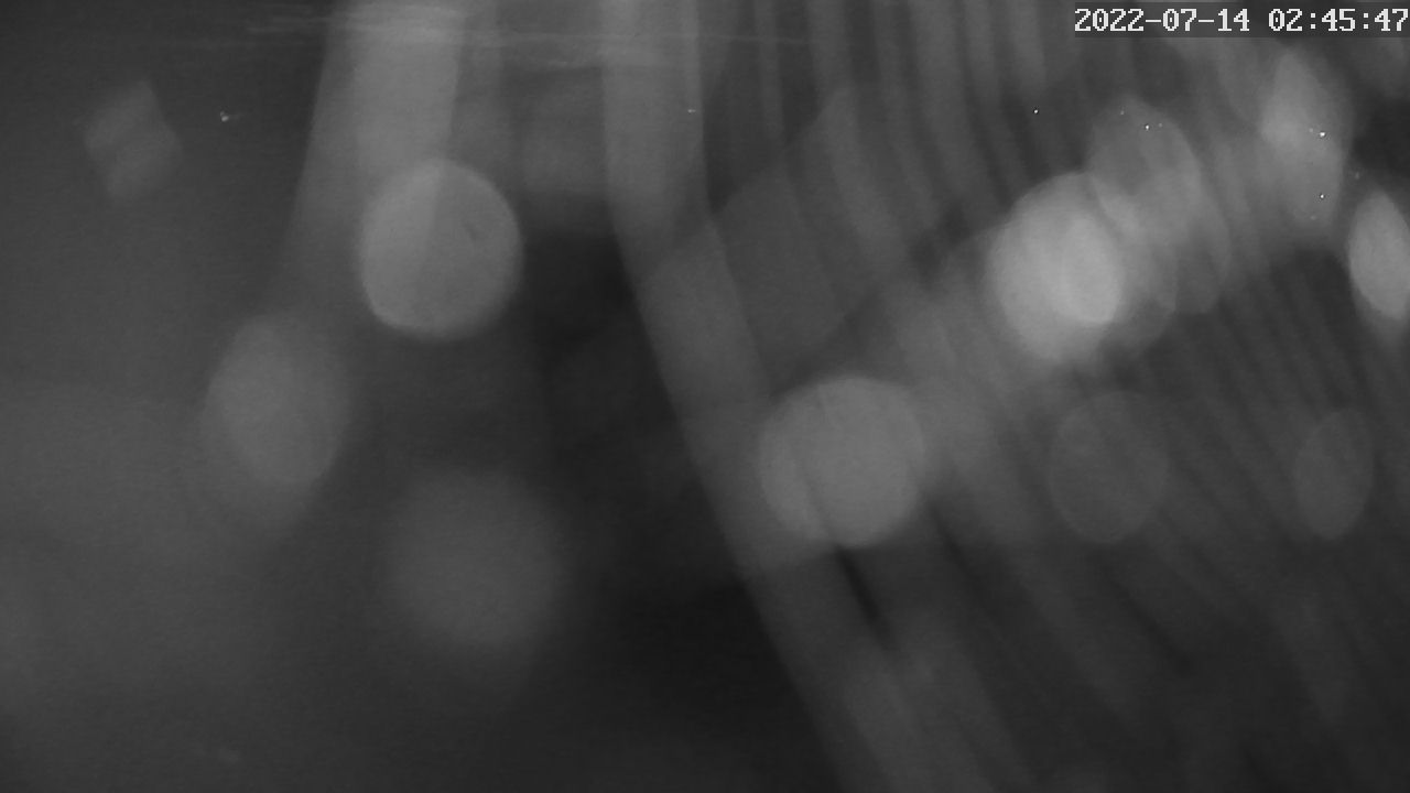 Webcam Bayerischer Yacht-Club